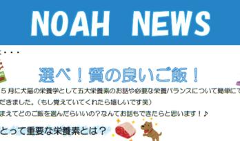 <重要なお知らせ>診察時間・休診日の変更